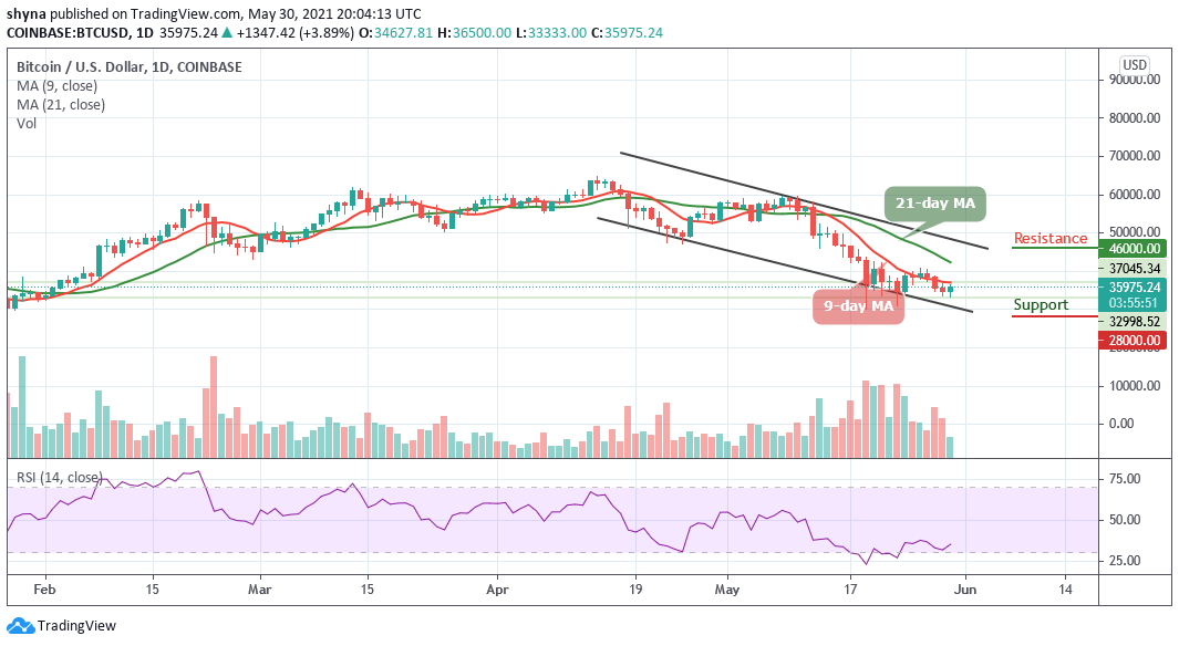 You are currently viewing Bitcoin Price Prediction: BTC/USD Climbs to $36,500