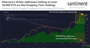Read more about the article Ethereum Whales Refuse to Sell Despite ETH's Plunge to $3,100