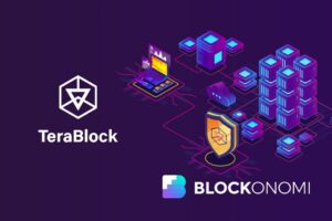 Read more about the article TeraBlock: A New Project Poised to Ease Your Cryptocurrency Portfolio Management