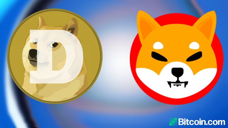You are currently viewing SHIB vs. DOGE – Who Is the Top Dog in Crypto Land?