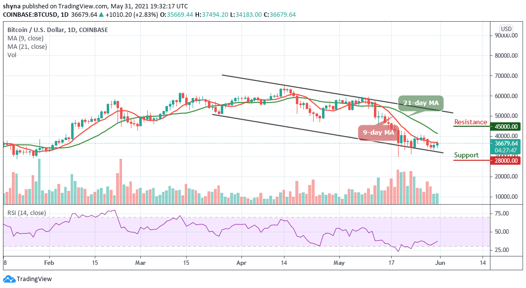 You are currently viewing Bitcoin Price Prediction: Is BTC/USD Ready for $40,000 Resistance?