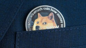 Read more about the article Dogecoin's Downward Slide: 2-Month Stats Show Meme-Based Crypto Is Down 76%
