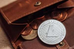 Read more about the article Litecoin, Dogecoin: price analysis of LTC and DOGE