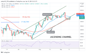 Read more about the article Bitcoin (BTC) Price Prediction: BTC/USD Takes a Giant Stride as It Breaks Above $48K