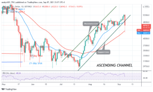 Read more about the article Bitcoin (BTC) Price Prediction: BTC/USD Crashes to $43K Low as Bitcoin Resumes Downward Correction
