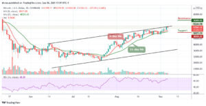 Read more about the article Bitcoin Price Prediction: BTC/USD Price Hovers at $51,561 Level