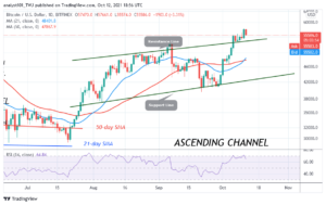 Read more about the article Bitcoin (BTC) Price Prediction: BTC/USD Is Set for More Upside Momentum as Bitcoin Holds Above $54k