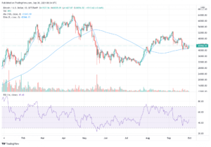Read more about the article 5 Best Cryptocurrency to Buy for the Recovery – October 2021 week 1