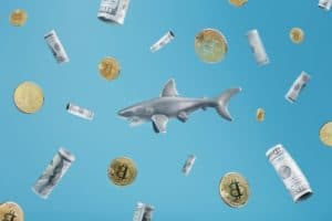 Read more about the article Santiment, annual highs for Bitcoin whales